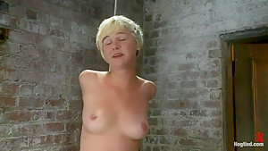 Cute Girl Next Door suffers her first Category 5 SuspensionStripped and made to cum like a whore