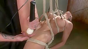 Pussy Punishment