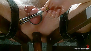 Chastity Cuckold Slave: 'Smell his cock on my pussy'